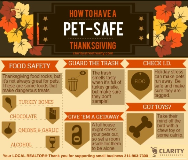 Thanksgiving pet safety tips from clarity street realty